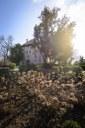 Parco del Castello di Torre