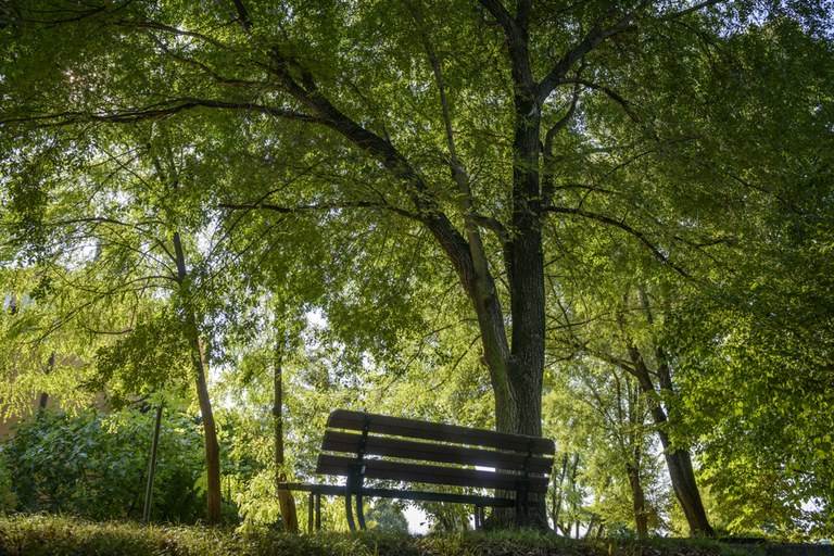 Parco di Largo Cervignano