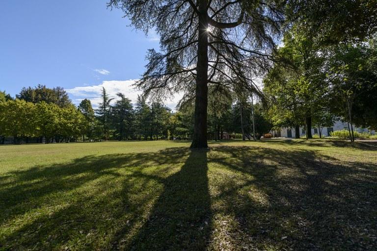 Parco Galvani