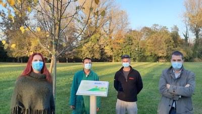 2500 nuovi alberi contro l'inquinamento urbano