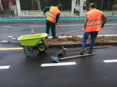 Via Cappuccini, iniziata la posa del nuovo verde urbano