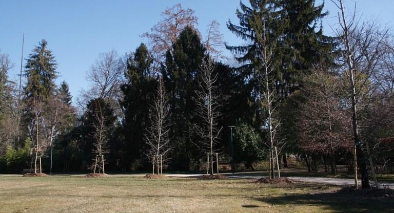 Foto   Al parco di San Valentino sul percorso pedonale