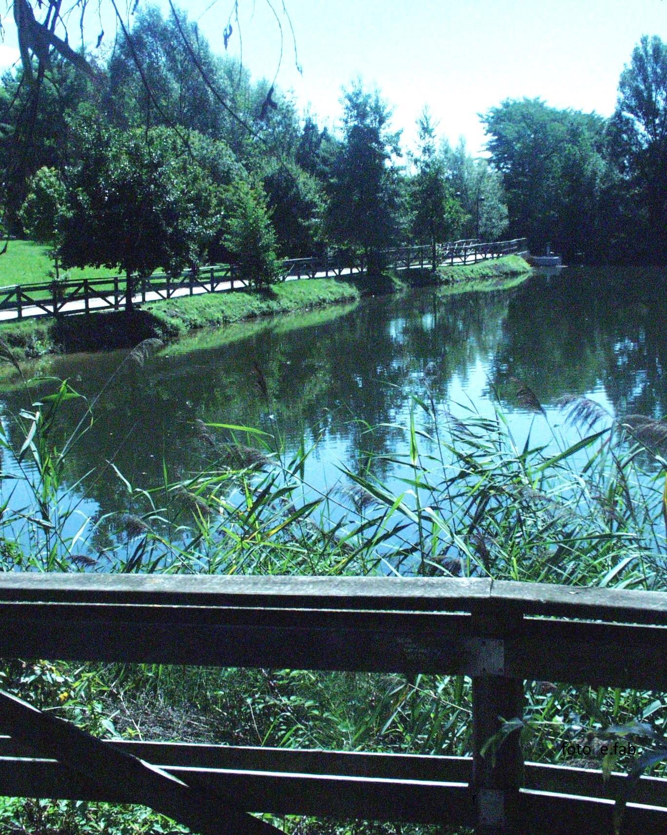 Foto Scorcio dei laghetti