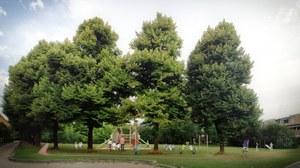 Vista Largo Cervignano - parco giochi 0-10 e percorso ginnico.jpg