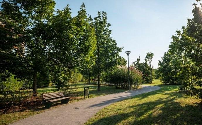 Parco Cimolai3 jpeg.jfif