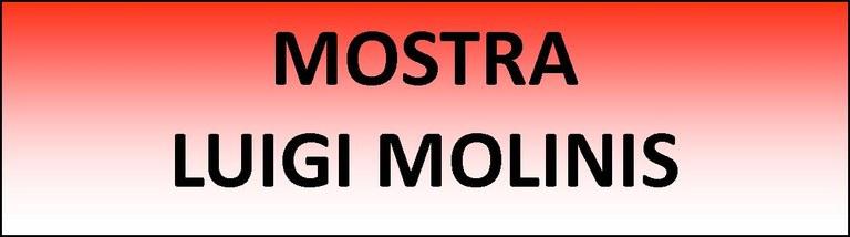 Logo mostra Luigi Molinis