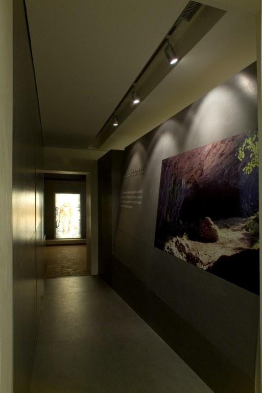 Sala 1 - Paleolitico