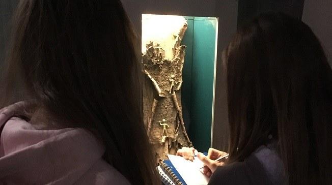 I bronzetti votivi