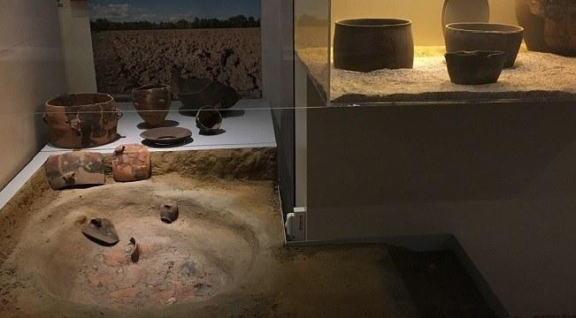 I pozzetti neolitici, solo immondezzai o scrigni di informazioni?