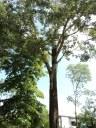 Parco di via Nitti
