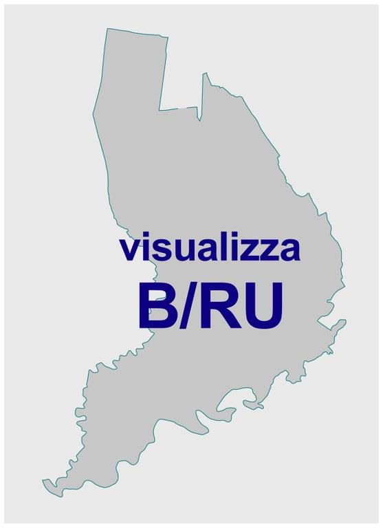 BRU-immagine