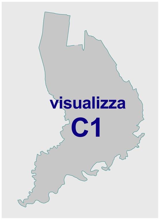 C1 - immagine